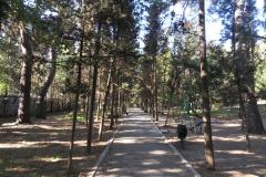 Малореченское, городской парк