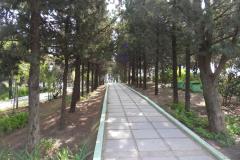 Парк пансионата Кулон