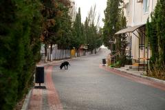 Улицы Судака