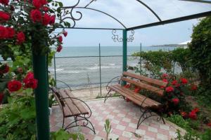 Отдых в Крыму – уютный и живописный частный сектор г. Щелкино