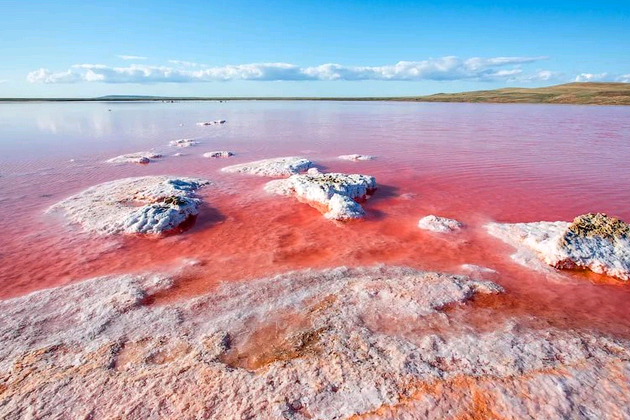 крым розовое озеро фото