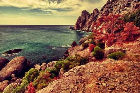 Отдыхайте в Крыму в ноябре!