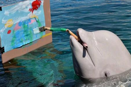 Удивительный мир евпаторийского дельфинария