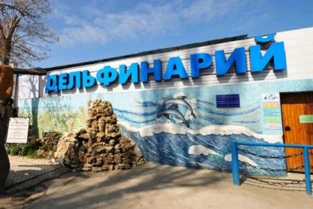 Где находится лучший дельфинарий в Крыму