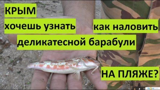 Крым. Рыбалка на барабулю на пляже.